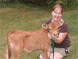 South Side Farm Miniature Jersey Cattle - Testimonials