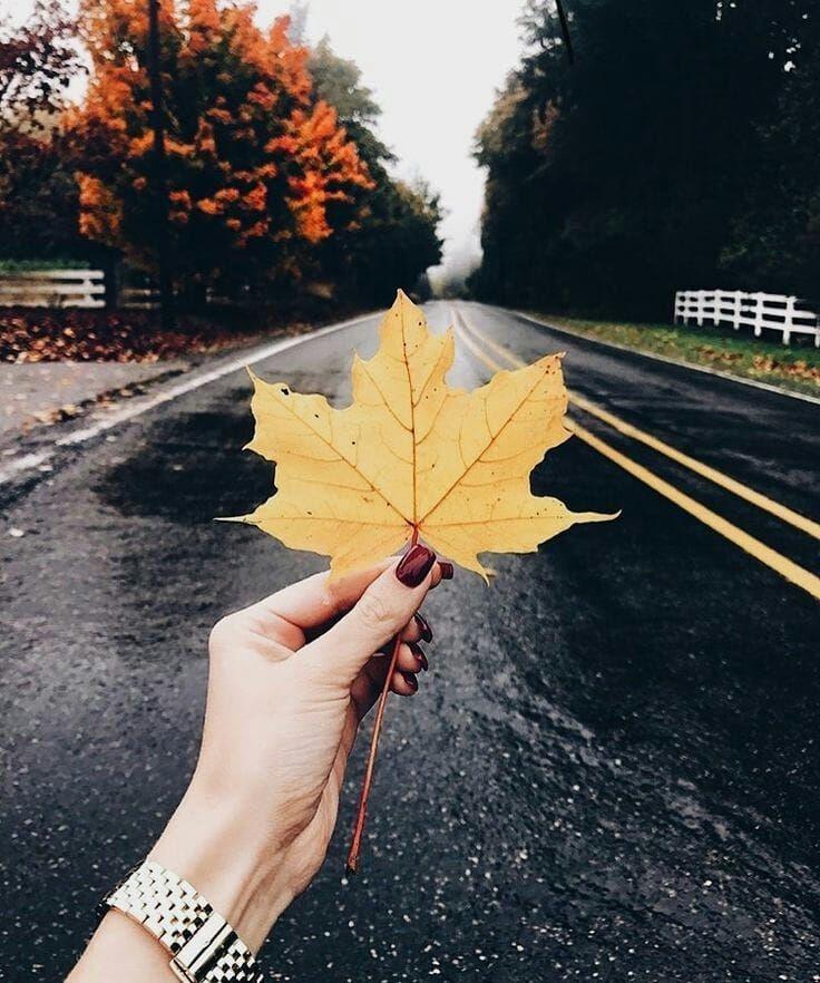 Картинки для инстаграма про осень