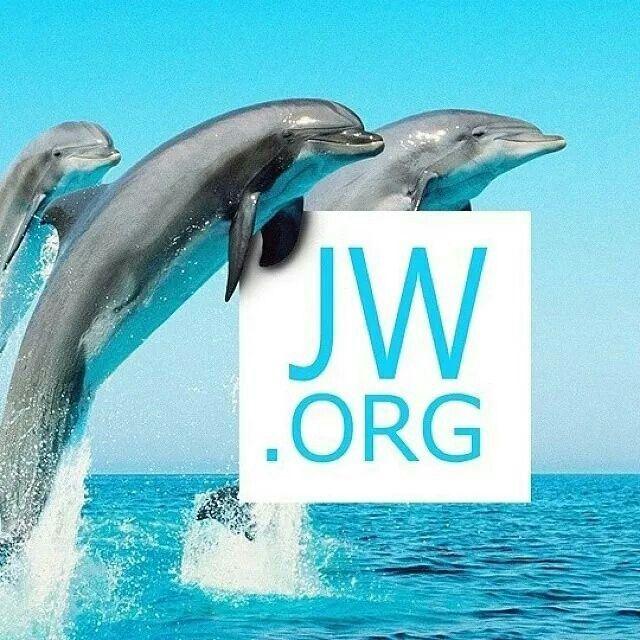 79 Best JWOrg Logos Images On Pinterest