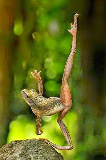 Ballerina?? :)