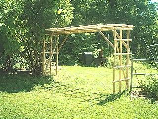 Grape Vine Arbor With Trellis
