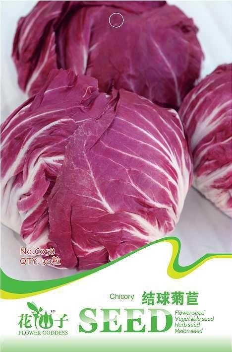 Семена овощных культур масло - начальник цикория фиолетовый капуста 30 шт./пакет оригинальная упаковка для дома сад крытый бонсай