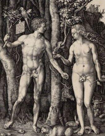 Albrecht Dürer | Adam und Eva - Adam and Eve | 1504 | Albertina, Wien