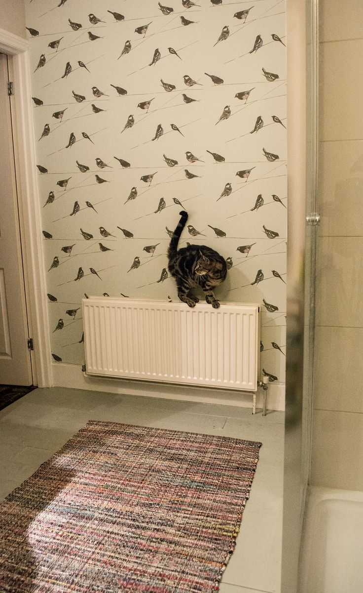 Our Bathroom at home: Louise Body Garden Birds wallpaper, John Lewis rug, Zoffany Norsk Blue floor paint (+ cat!)