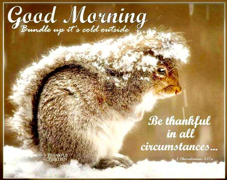 340 Best Images About Good Morning On Pinterest