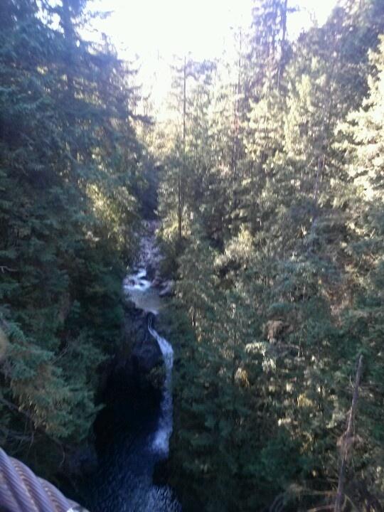 Lynn Canyon from the Suspension Bridge