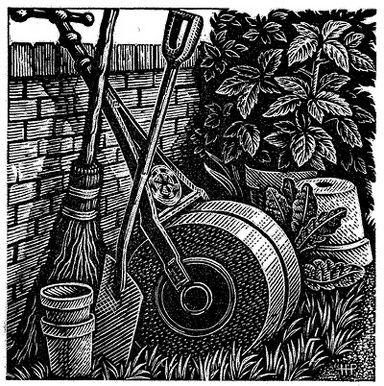 Howard Phipps. A Corner of the Garden. (wood engraving)