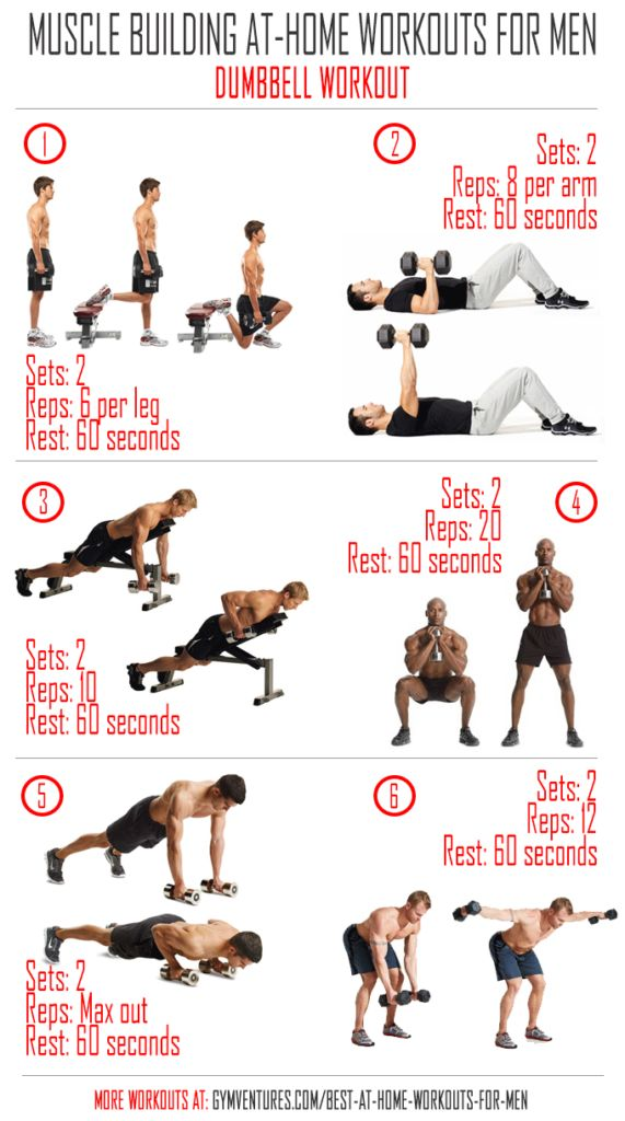 Dumbbell workout routine for effective muscle building