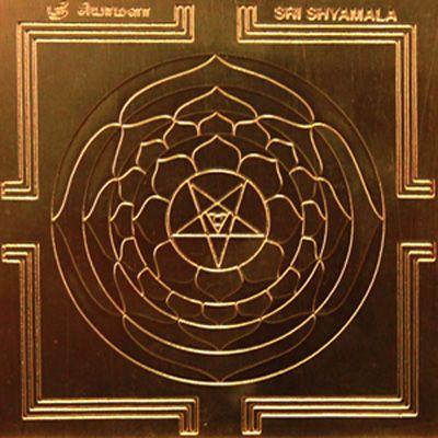 Maa sharda logo