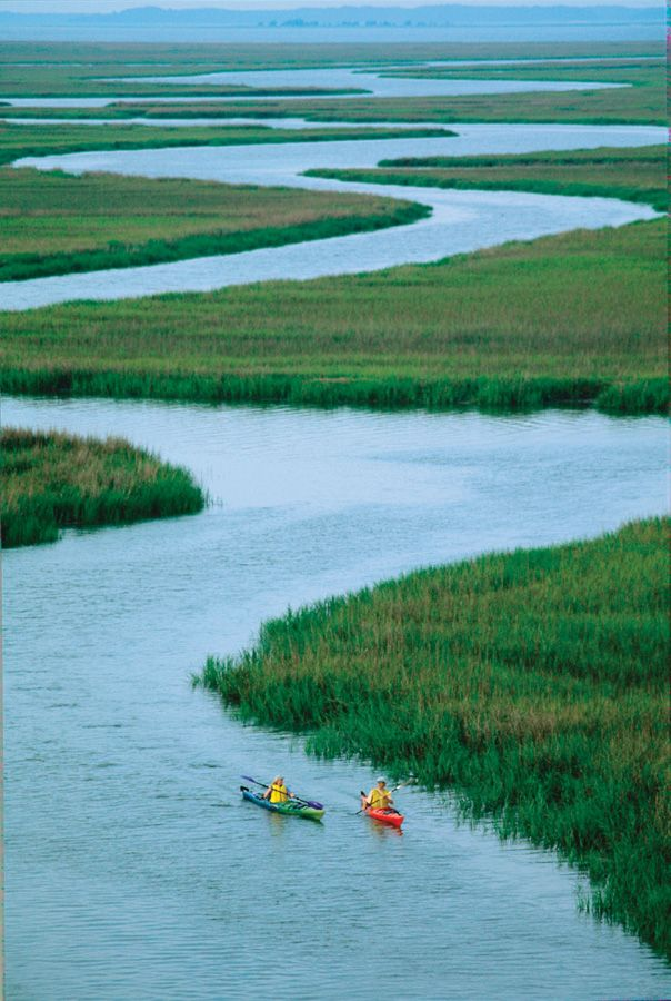 EXPLORE // Hilton Head Island - One great way to explore the lagoons, inlets and marshes in Hilton Head is to rent kayaks and spend a day on the water. #thingstodo #spmvacations