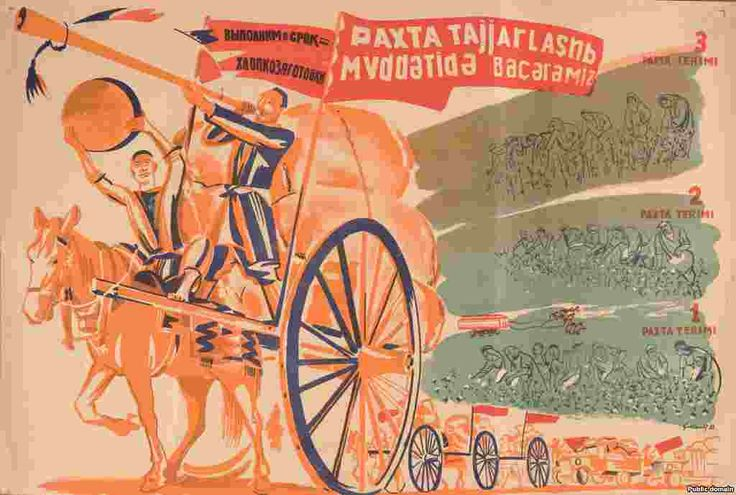 """Russian and Uzbek language poster aimed at encouraging cotton pickers. The text reads: """"We will harvest the cotton on time. 1st cotton harvest. 2nd cotton harvest. 3rd cotton harvest."""". Artist: Semyon Malt, 1933."""