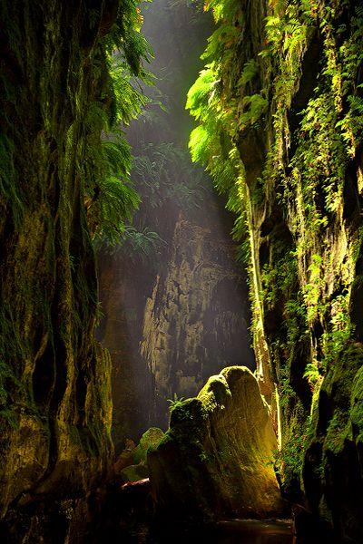 Blue Mountain, Australia, by Lee Duguid .