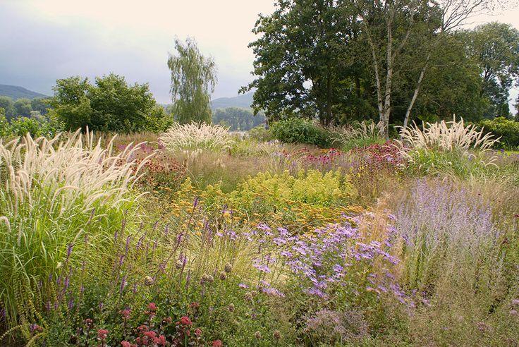 1779 Best Garden Inspiration Not My Garden Images On 400 x 300