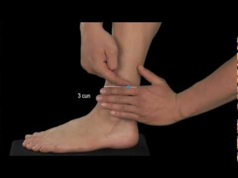 This is a specially selected group of acupressure points for stiff neck. For more acupressure points videos visit   http://www.downloadacupoints.com    You should go through the video and stimulate the acupressure points on both sides of the body.     How to relieve stiff neck video will guide you through the stimulation. Just follow through wit...