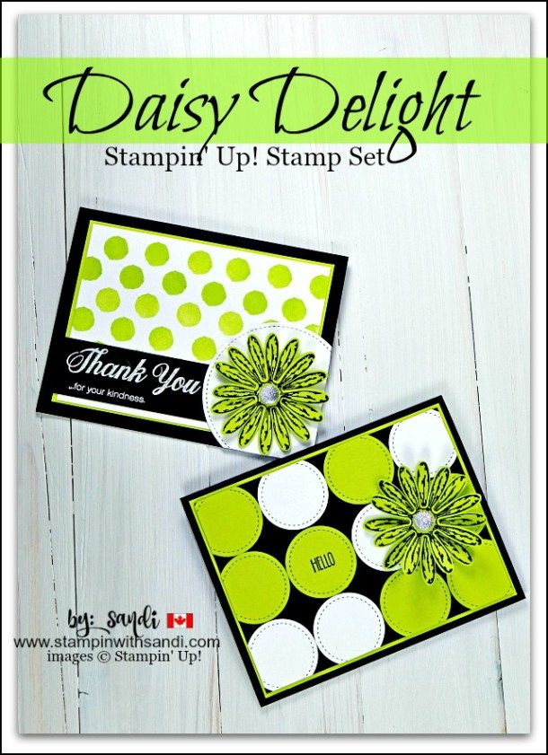 Stampin Up Daisy Delight cards by Sandi @ stampinwithsandi.com