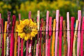 Bildergebnis für holzzaun staketenzaun farbe