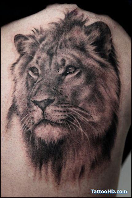Tatouage Tête de Jeune Lion Mâle