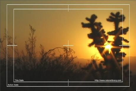 Royalty Free Stock Footage: Desert: NL00096