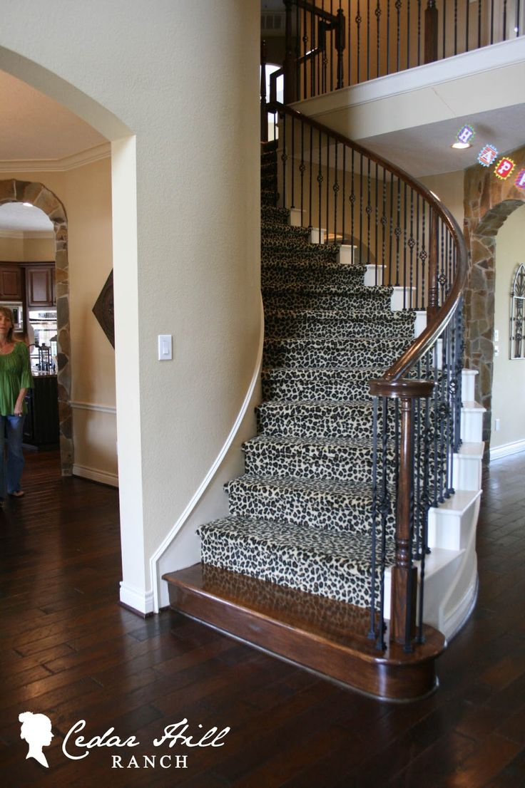 Would Love To Have A Cheetah Carpet Going Up The Stairs
