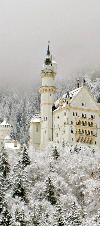 Snowy, Neuschwanstein Castle, Germany photo via emelia