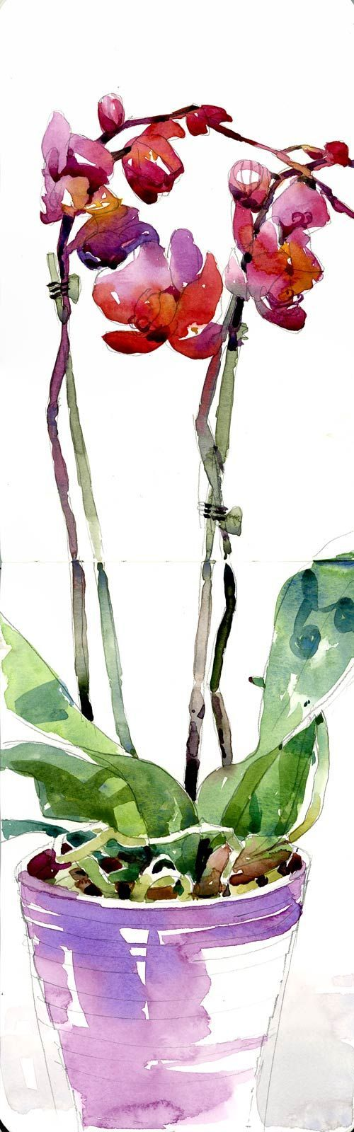 Oh wow! So beautiful! I wish my watercolour game was as good as this! by Shari Blaukopf #art