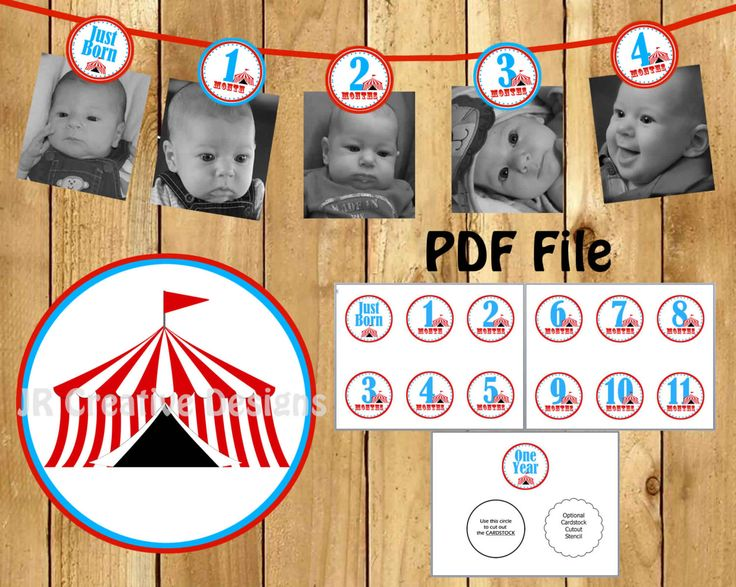 Carnival Photo Banner Circus Photo Banner 1st Year picture banner Carnival 1st Birthday banner Circus Birthday Banner 12 month banner by JRCreativeDesigns on Etsy https://www.etsy.com/listing/270763418/carnival-photo-banner-circus-photo