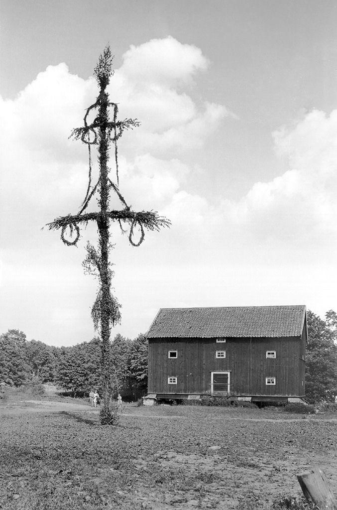 Midsummer pole (may pole) and farm building for storage. Höjentorp, Västergötland, Sweden, 1932