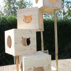 Arbre a chats en bois naturel en tour animaux pinterest - Arbre a chat en bois naturel ...