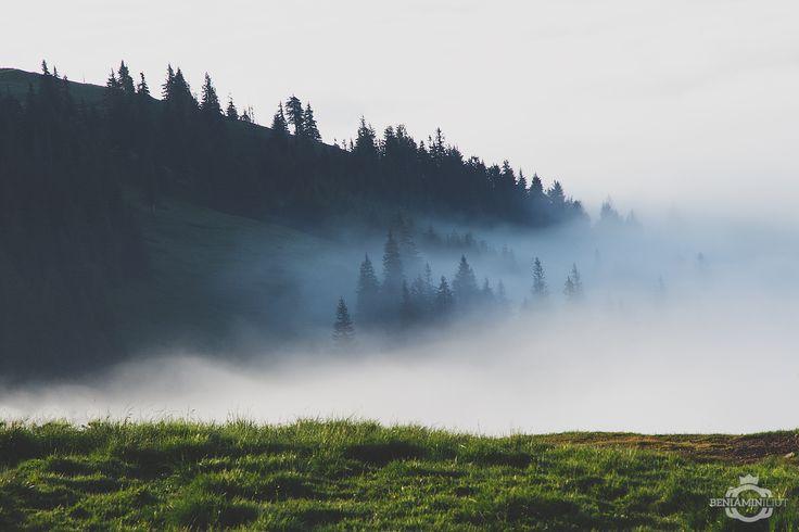 Fog.04 by Beniamin Iliut on 500px