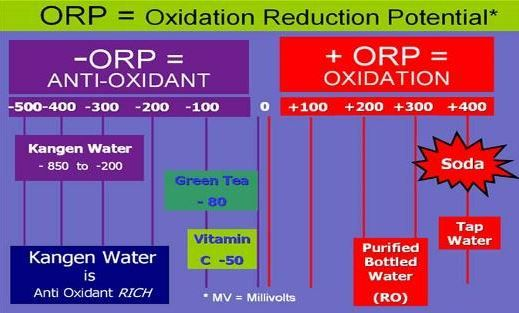 Oxygen Reduction Potential