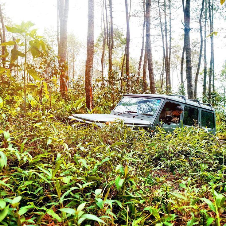 """48 kedvelés, 1 hozzászólás – ॐ (@madebuanaputra) Instagram-hozzászólása: """"camouflage • 🍂 🍂 #mercedes #mercedesbenz #g63 #g55 #g300 #g300 #swb #car #mbcars #mbfanphoto…"""""""