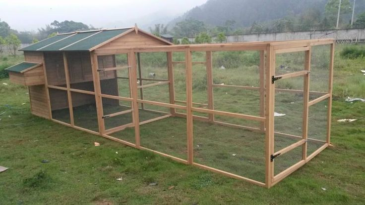 extra large chicken coop with run 2