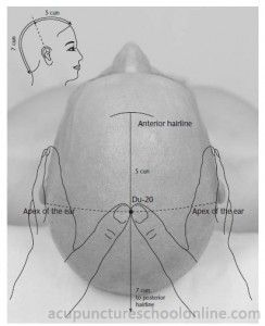 Du-20 Hundred Meetings BAIHUI - Acupuncture Points -1