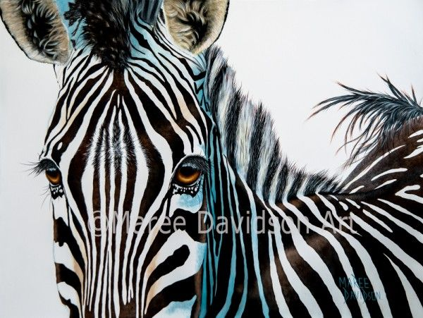 Zuri_Zebra Paintings_Wildlife_Fine Art_Maree Davidson Art