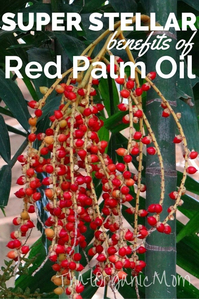 Super Stellar benefits of Red Palm Oil, you won't believe all the things it's good for, including inflammation!