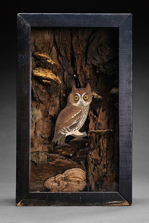 My Owl Barn: Joseph Cornell and His Boxes