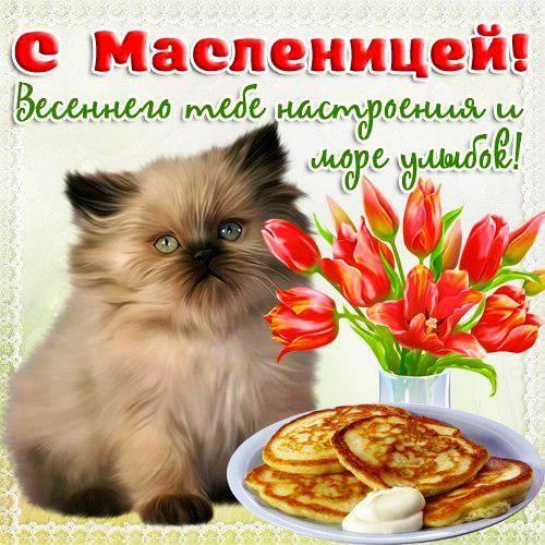 xn--h1adaolkc5e.kz uploads 3 4 3 3434-otkritki-Otkritka-kartinka-Maslenitsa-russkaya-traditsiya-pozdravlenie-russkaya-traditsiya-blini-kotenok.jpg