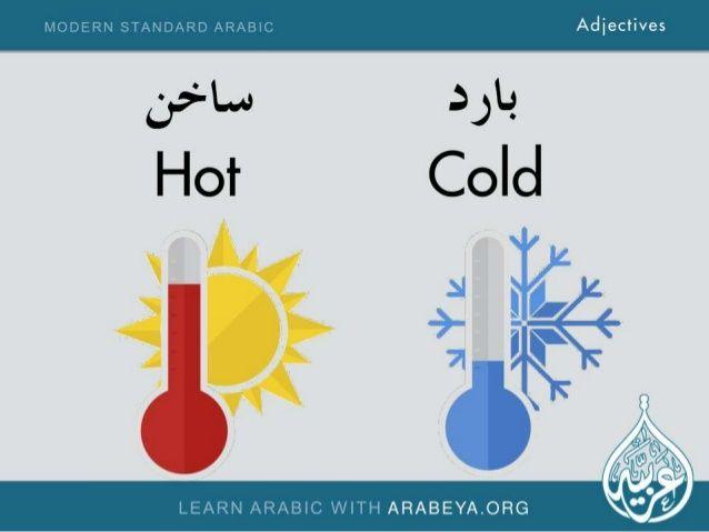 Why You Shouldn't Learn Modern Standard Arabic Before A ...