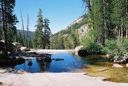 creek by vvredisonlake, via Flickr