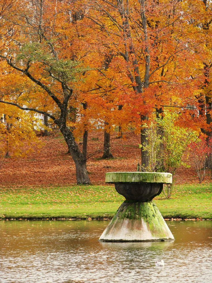 Swan Pond, Mount Allison University, Sackville, New Brunswick, Canada by Morgan Guptill