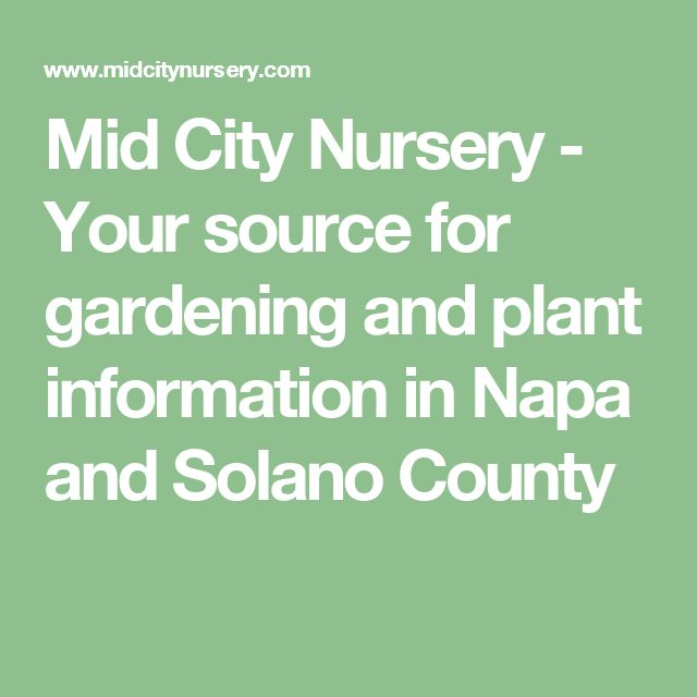Mid City Nursery - Your source for gardening and plant information in Napa and Solano County