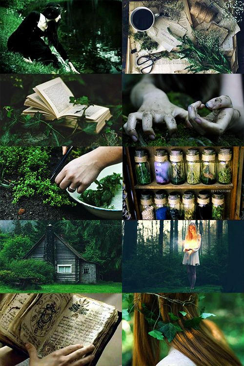 "call-me-winter-soldier: ""  Green Witch aesthetic (more) """