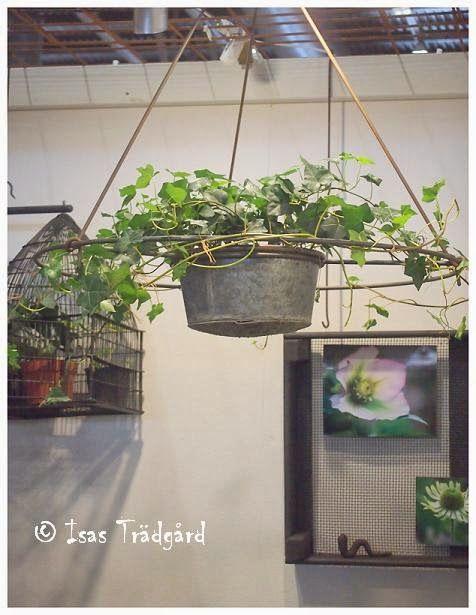 Smarta och kreativa idéer från Nordiska trädgårdar !