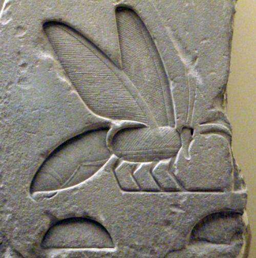 "Bee hieroglyph from the tomb of the pharaoh Senusret I (aka Sesostris I): ""Sedge and Bee."""