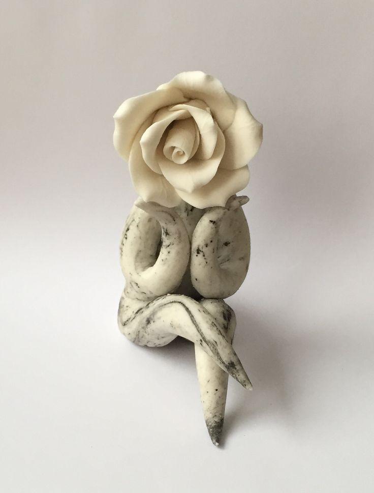 Pondering rose
