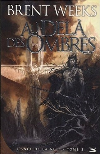 "Night Angel Trilogy book 3 French cover. ""Beyond the Shadows"" gonna read it later."