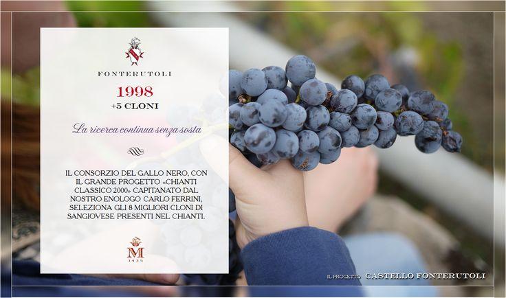 E' il 1998 e la ricerca per ottenere il miglior Castello di Fonterutoli continua. @marchesimazzei #fonterutoli #marchesimazzei #wine #tuscany