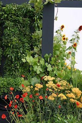 greencube garden and landscape design, UK: March 2011
