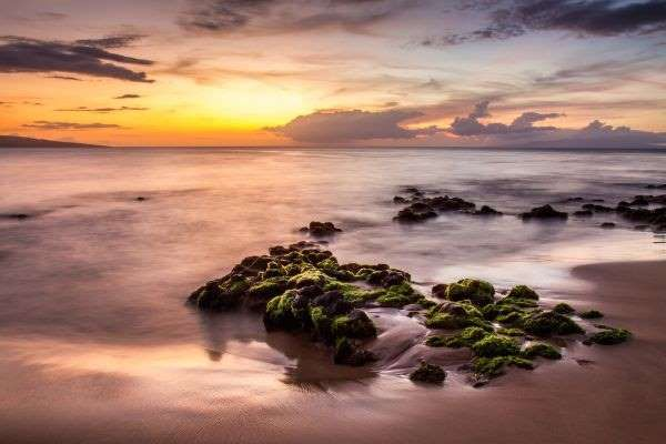 Les belles plages de l'île de Wailea sont les préférées des couples durant leur lune de miel.