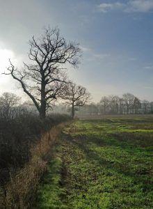Heart of England Way in Warwickshire